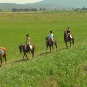 Horse riding Destination Zadar